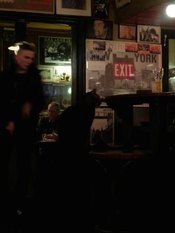 H2O HoL secret bar with secret bar cat