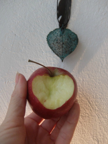 HoL H2O apple heart feather